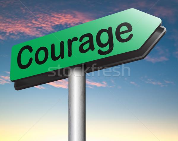 Courage compétence peur douleur danger incertitude Photo stock © kikkerdirk
