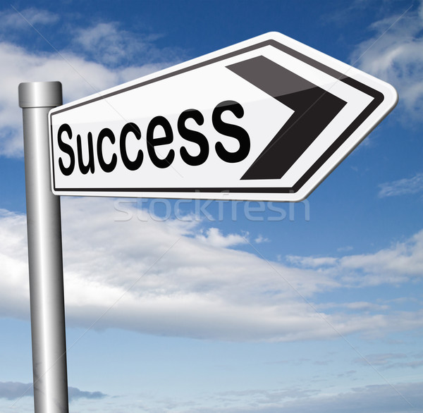 road to success Stock photo © kikkerdirk