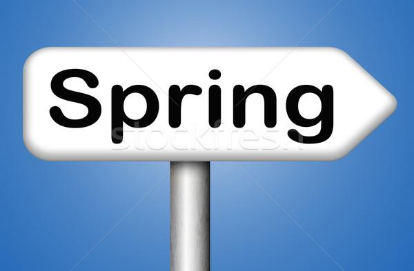 spring time Stock photo © kikkerdirk