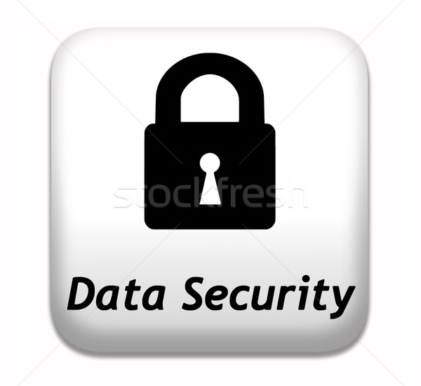 Segurança de dados botão seguro proteger internet Foto stock © kikkerdirk