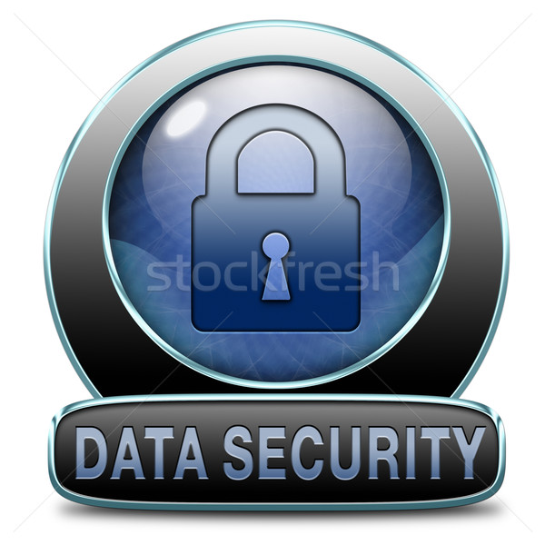 Segurança de dados dados internet segurança on-line Foto stock © kikkerdirk