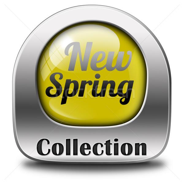 весны коллекция новых моде стиль икона Сток-фото © kikkerdirk
