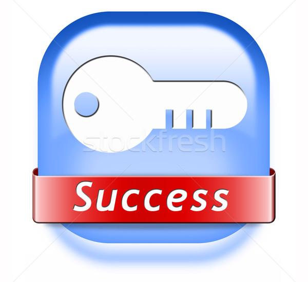 success button Stock photo © kikkerdirk