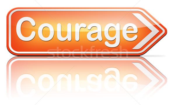 мужество способность страхом более опасность неопределенность Сток-фото © kikkerdirk