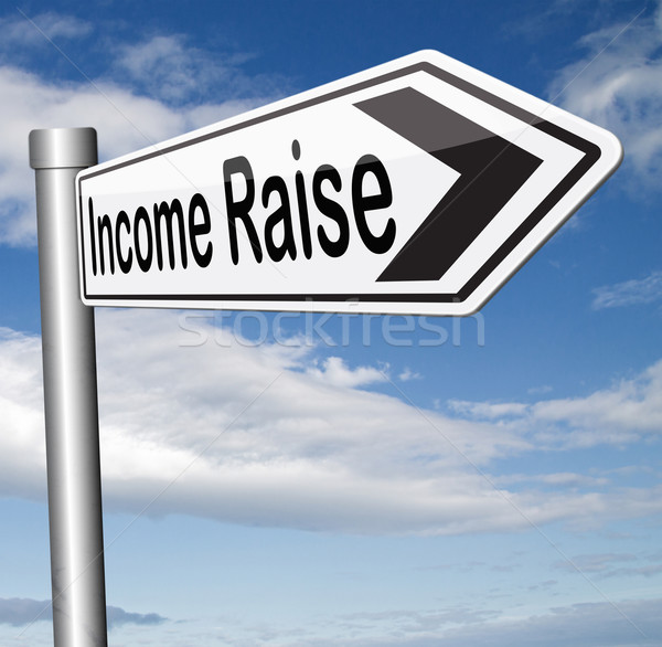 income raise Stock photo © kikkerdirk