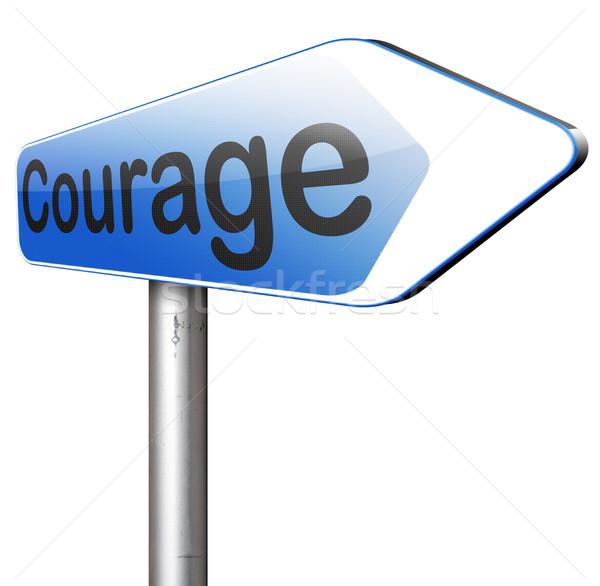 Coraggio capacità no paura dolore pericolo Foto d'archivio © kikkerdirk