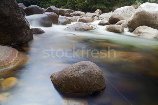 pebbels in creek Stock photo © kikkerdirk