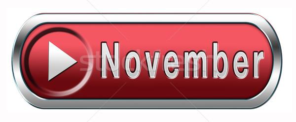 November button Stock photo © kikkerdirk