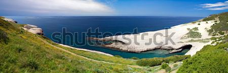 white chalk cliffs eroded coastline Stock photo © kikkerdirk