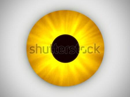 Sarı göz görüntü büyük sanat yeşil Stok fotoğraf © Kirschner