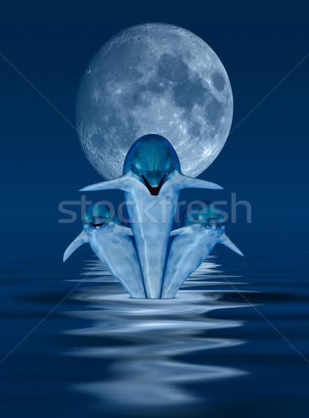 イルカ 画像 生成された 月 水 魚 ストックフォト © Kirschner