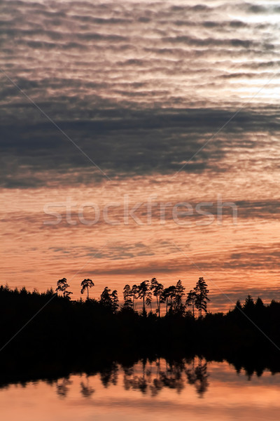 Silenzioso mare immagine foresta tramonto nubi Foto d'archivio © Kirschner