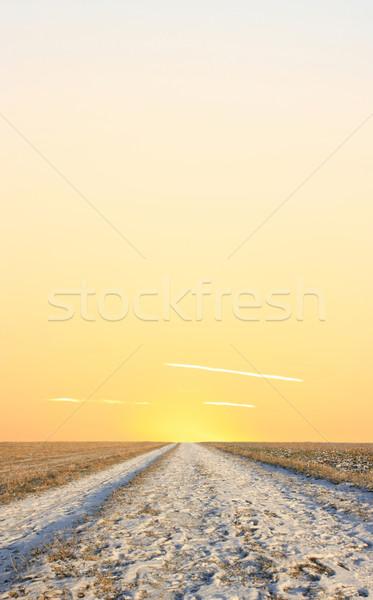 光 地平線 画像 孤独 田舎道 日没 ストックフォト © Kirschner