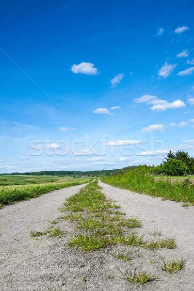 農村 方法 画像 田舎道 空 雲 ストックフォト © Kirschner