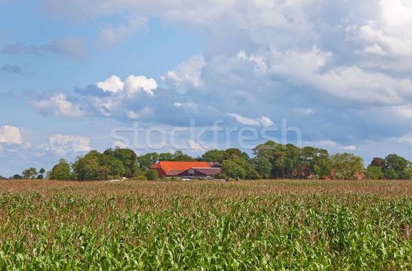 çiftlik görüntü kuzey Almanya Bina Stok fotoğraf © Kirschner