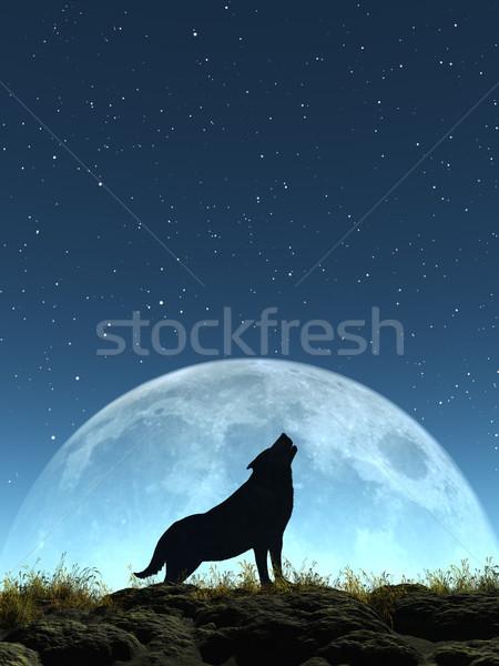 Ağlayan kurt görüntü oluşturulan ay Yıldız Stok fotoğraf © Kirschner