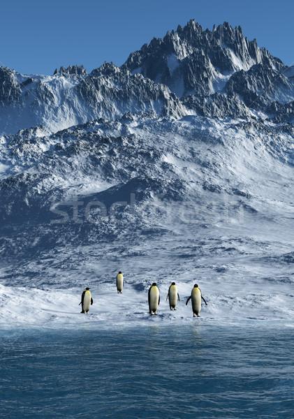 Görüntü su manzara deniz kar Stok fotoğraf © Kirschner