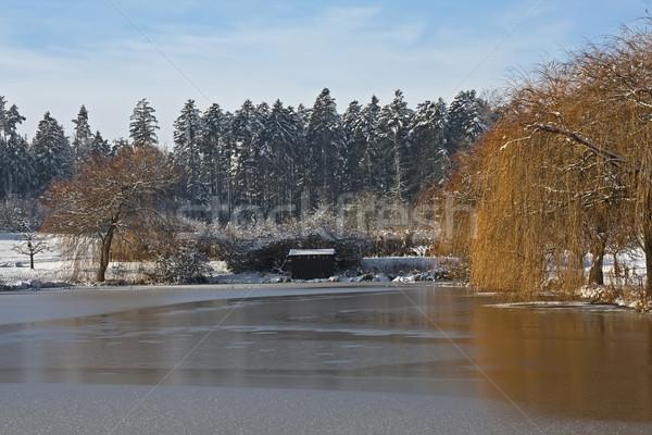 凍結 海 画像 冬 雲 風景 ストックフォト © Kirschner