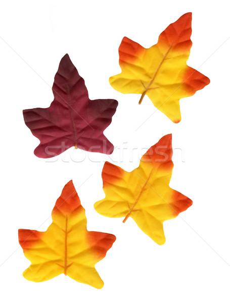 装飾 葉 テクスチャ 布 秋 プラスチック ストックフォト © Kirschner