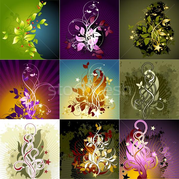 Establecer floral marcos ilustración útil disenador Foto stock © kjolak
