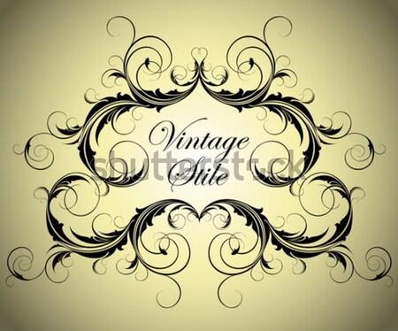 ornate banner Stock photo © kjolak