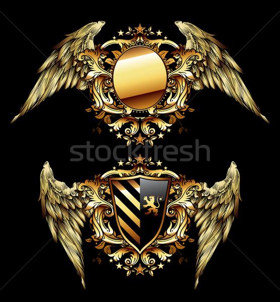 Dois preto decorado dourado asas Foto stock © kjolak
