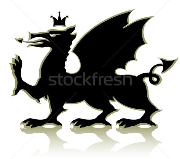 heraldic medieval dragon Stock photo © kjolak