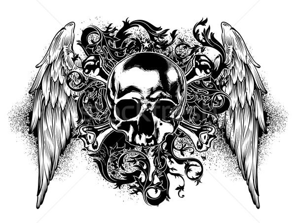 Photo stock: Décoratif · art · crâne · humaine · ailes · résumé