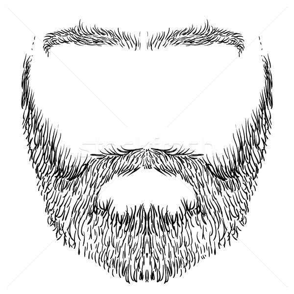 beard, mustache, eyebrows Stock photo © kjolak