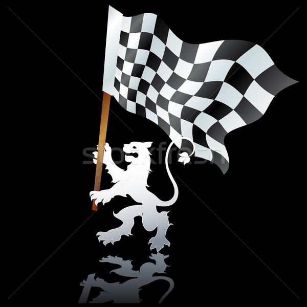 Vlag formule illustratie nuttig ontwerper werk Stockfoto © kjolak