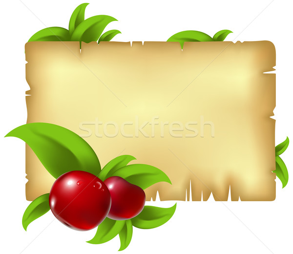 paper with leaves and berry Stock photo © kjolak