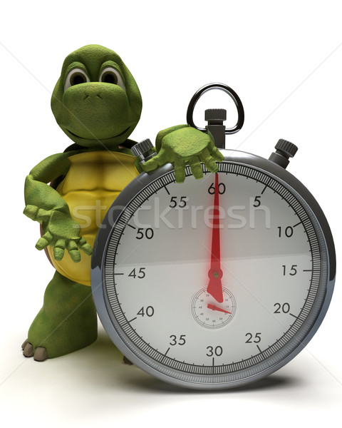 Tortoise with a traditional chrome stop watch Stock photo © kjpargeter