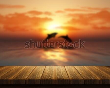Ahşap masa bakıyor dışarı deniz yunuslar atlama Stok fotoğraf © kjpargeter