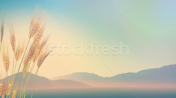 3D пшеницы холмы расстояние ретро эффект Сток-фото © kjpargeter