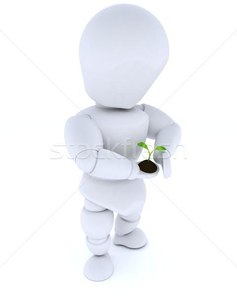 man nurturing a  seedling plant  Stock photo © kjpargeter