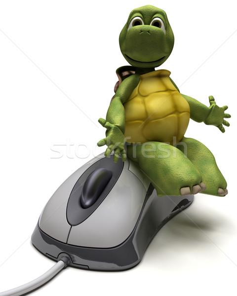 Teknősbéka számítógép egér 3d render számítógép víz egér Stock fotó © kjpargeter
