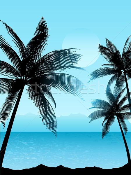 Tropikal sahne palmiye ağaçları ağaç gün batımı deniz Stok fotoğraf © kjpargeter