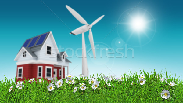 3D render of daisies in grass with house and wind turbine blurre Stock photo © kjpargeter