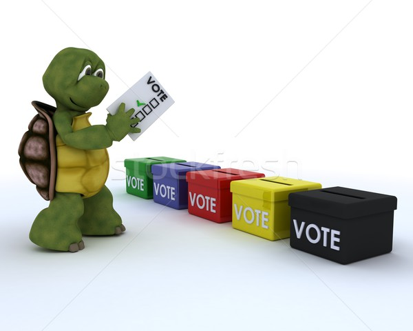 tortoise casting a vote in election Stock photo © kjpargeter