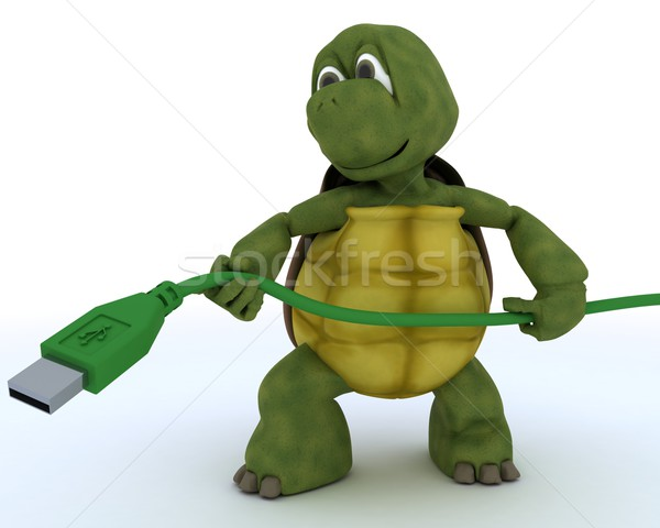 Tortoise with a usb cable Stock photo © kjpargeter
