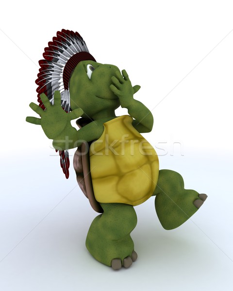 tortoise dressed as native american indian Stock photo © kjpargeter