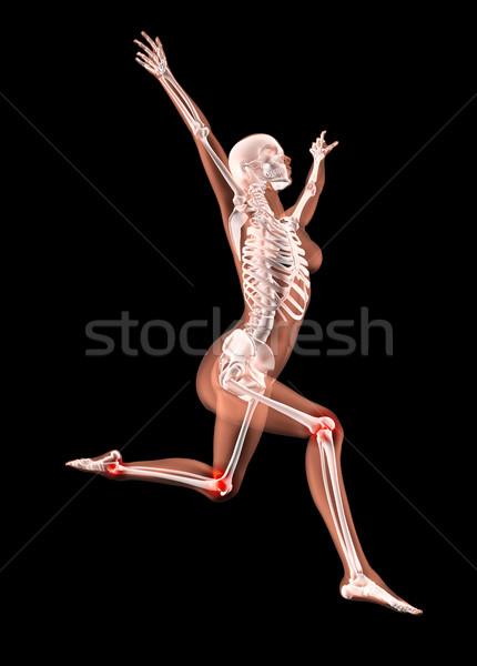 Сток-фото: прыжки · женщины · медицинской · скелет · 3d · визуализации · ногу