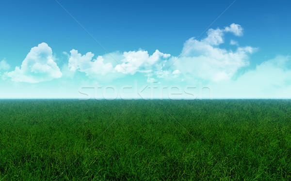 травянистый области 3d визуализации небе облака весны Сток-фото © kjpargeter