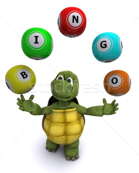 tortoise with bingo balls Stock photo © kjpargeter
