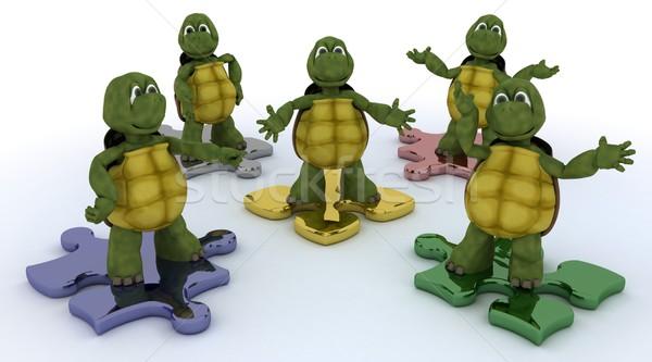 tortoises on jigsaw pieces Stock photo © kjpargeter