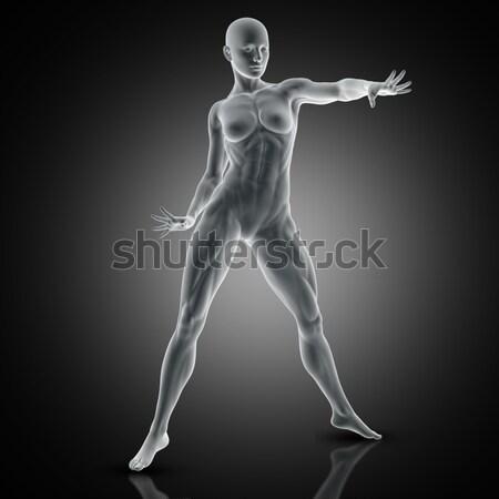 3D vrouwelijke medische cijfer maag pijn Stockfoto © kjpargeter