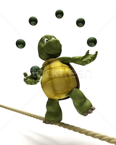 Schildpad jongleren strak touw 3d render business Stockfoto © kjpargeter