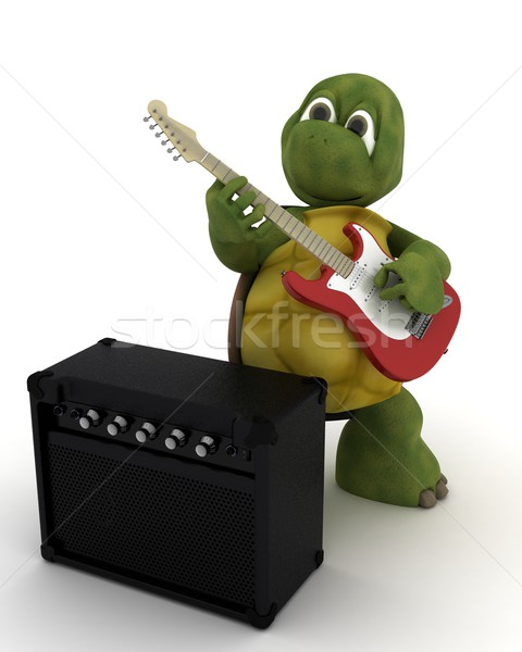tortoise playing the guitar Stock photo © kjpargeter