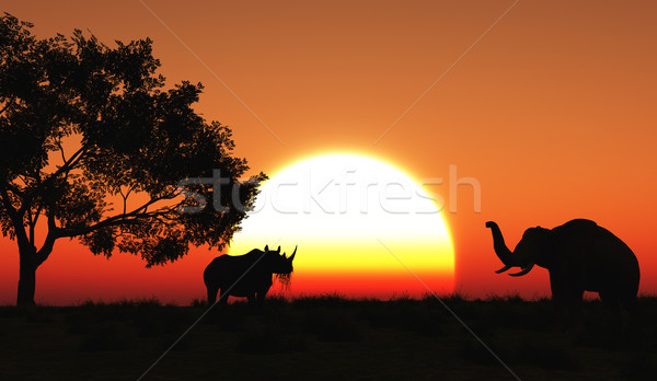 3D african landscape Stock photo © kjpargeter