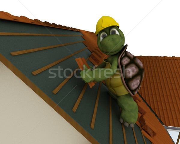 tortoise roofing contractor Stock photo © kjpargeter
